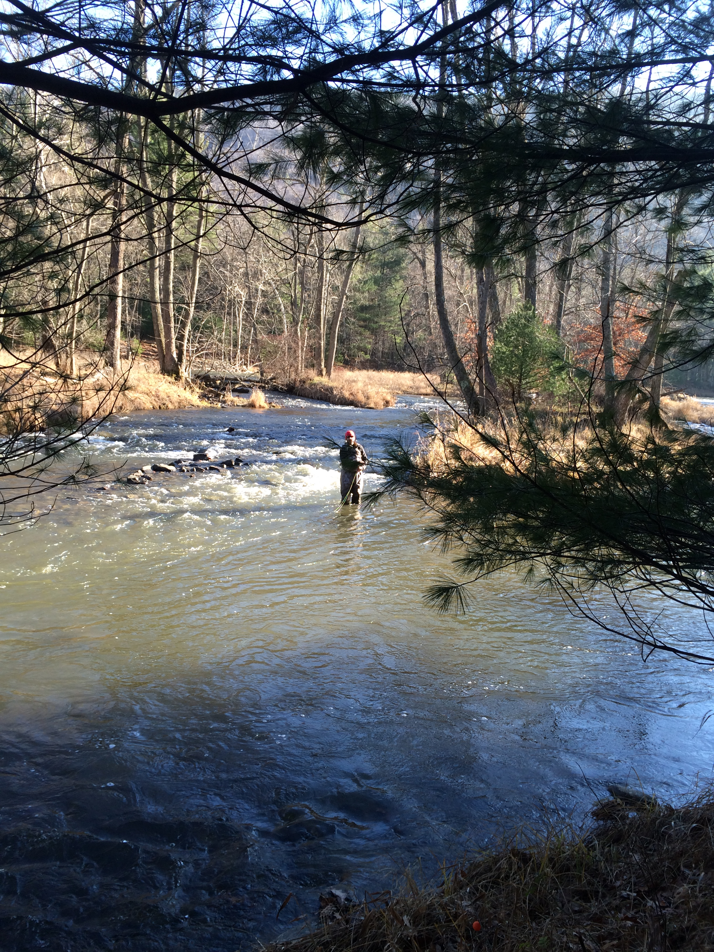 Penns creek stream report 12 5 2015 coachdog expeditions for Spring creek pa fishing report